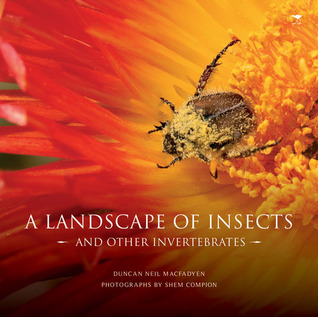 A Landscape of Insects: And Other Invertebrates