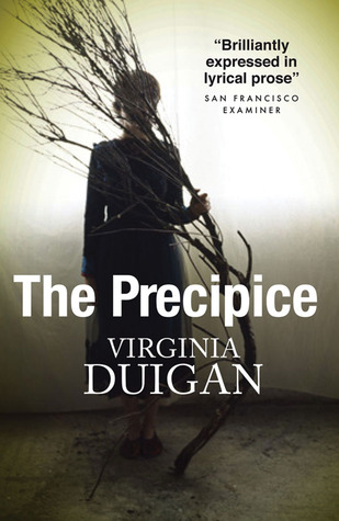 The Precipice by Virginia Duigan