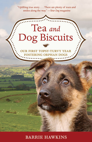 tea-and-dog-biscuits-our-first-topsy-turvy-year-fostering-orphan-dogs