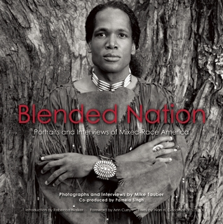 Blended Nation by Mike Tauber