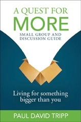 Quest for More Small Group and Discussion Guide: Living for Something Bigger Than You