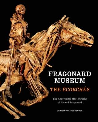 Fragonard Museum: The Écorchés