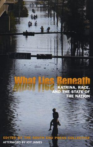 What Lies Beneath: Katrina, Race, and the State of the Nation