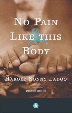 No Pain Like This Body: A Novel