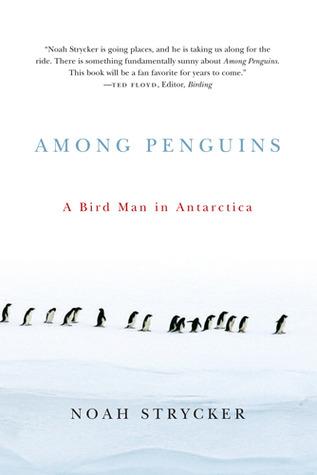among-penguins-a-bird-man-in-antarctica