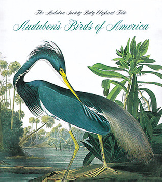 Audubon's Birds Of America: The National Audubon Society Baby Elephant Folio