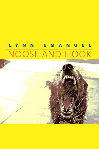 Noose and Hook
