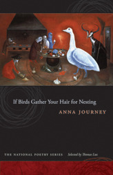 If Birds Gather Your Hair for Nesting by Anna Journey