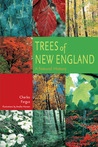 Trees of New England: A Natural History