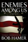 Enemies Among Us (Matt Hogan #1)