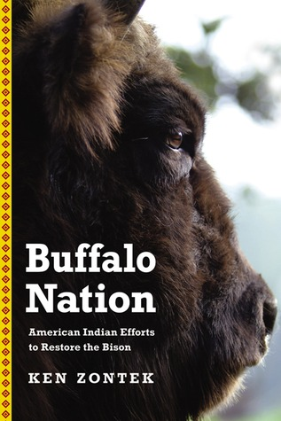 Buffalo Nation by Ken Zontek