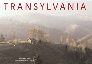 Transylvania by Bronwen Riley