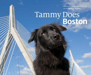 Tammy Does Boston