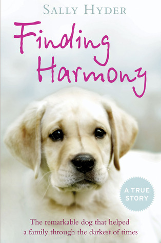 finding-harmony-the-remarkable-dog-that-helped-a-family-through-the-darkest-of-times