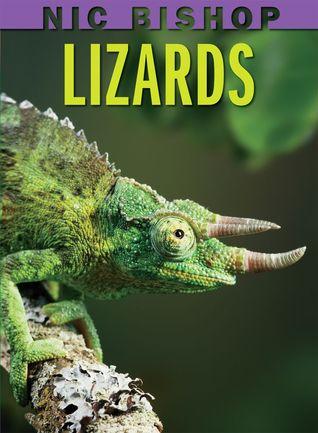 Lizards by Nic Bishop