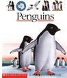 Penguins by René Mettler