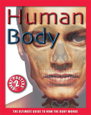 Watch the ultimate guide: human body | enhancetv.