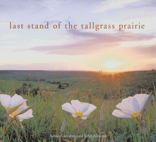 last-stand-of-the-tall-grass-prairie
