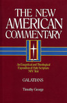 Galatians: An Exegetical and Theological Exposition of Holy Scripture (New American Commentary, #30)