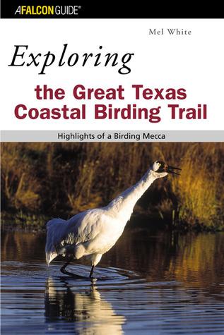 Exploring the Great Texas Coastal Birdin...
