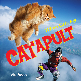 Catapult by Mr. Higgs