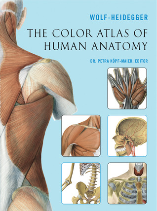 The Color Atlas Of Human Anatomy By Gerhard Wolf Heidegger