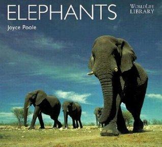 Descargar el libro de texto Elephants