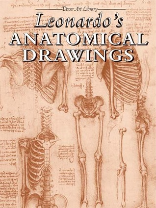 leonardo-s-anatomical-drawings