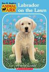 Labrador on the Lawn (Animal Ark, #61)