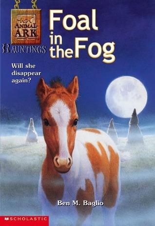 foal-in-the-fog