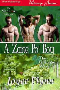 Ebook A Zane Po' Boy by Joyee Flynn PDF!