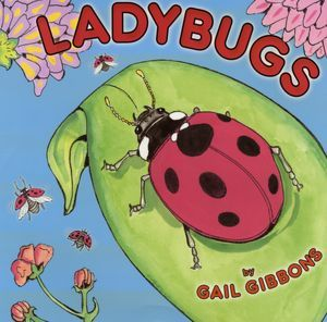 ladybugs, book cover