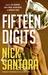 Fifteen Digits by Nick Santora