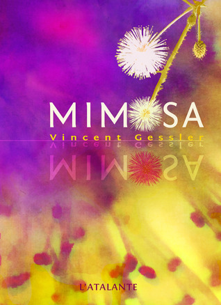 Mimosa by Vincent Gessler