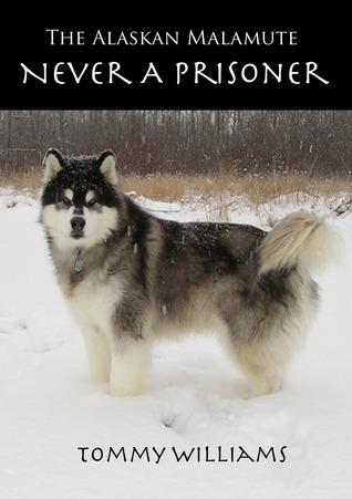 The Alaskan Malamute: Never A Prisoner