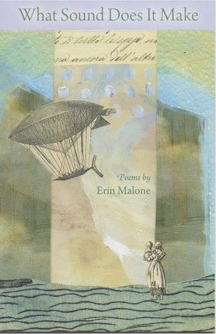 What Sound Does It Make by Erin   Malone