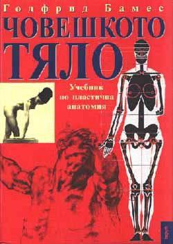 Човешкото тяло: Учебник по пластична анатомия