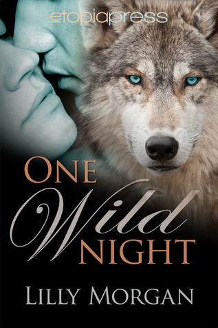 One Wild Night (Wild Nights Book 1)