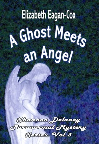 A Ghost Meets an Angel (Shannon Delaney, #3)
