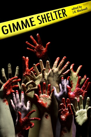Gimme Shelter by P.J. Schnyder