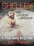 Shelley The Lifeboat Labrador