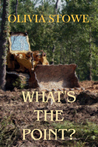 What's the Point? (Charlotte Diamond Mysteries, #5)