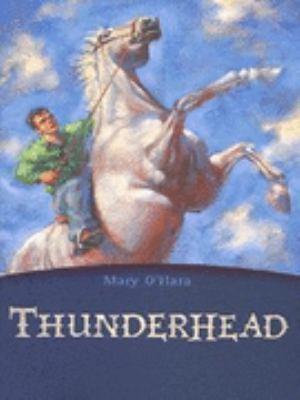Thunderhead (Flicka, #2)