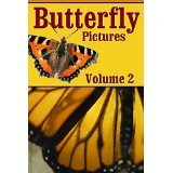 Butterfly Pictures Volume 2 - G. Alexander