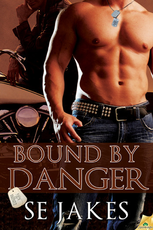 Bound to Danger: An erotic thriller