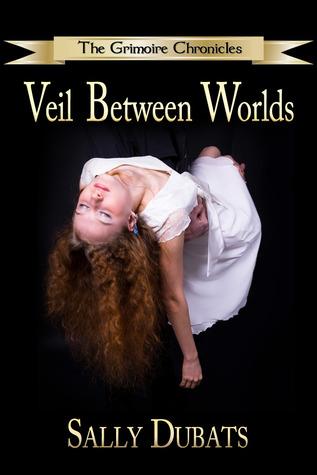 Veil Between Worlds