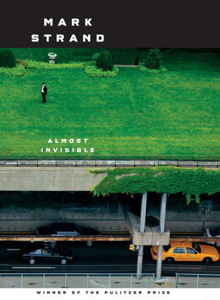 Almost Invisible: Poems