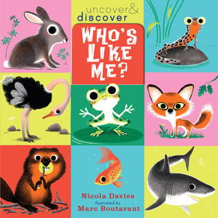 Who's Like Me? by Nicola Davies