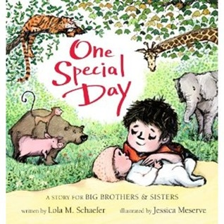 One Special Day by Lola M. Schaefer