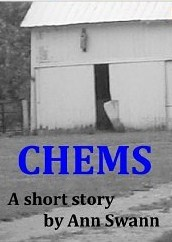 CHEMS - A Short Story